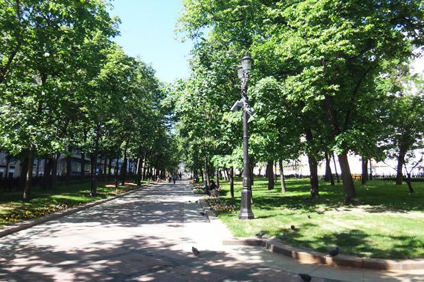 ロシアの夏