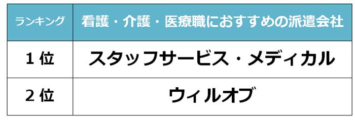 堺市 看護派遣会社